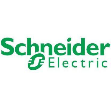 SCHNEIDER LOGO - کنتاکتور خازنی 60کیلوواری اشنایدر SCHNEIDER مدل LC1DWK12M7